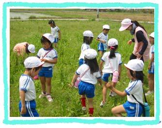 山口県防府市の幼稚園 玉祖幼稚園(たまのやようちえん)カリキュラム ネイチャ―ランド 五感を養える