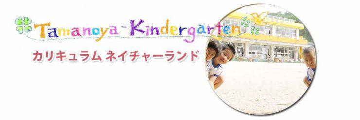 山口県防府市の幼稚園 たまのや幼稚園 カリキュラム ネイチャーランド